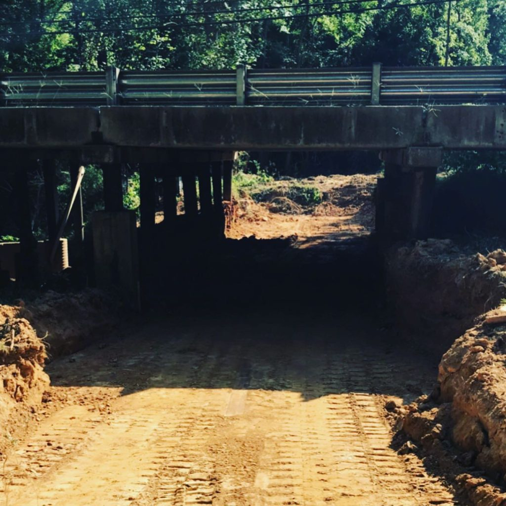 AUGUST 2019: Significant clearing of path under Gillsbrook Drive.